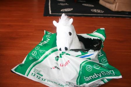 node pony
